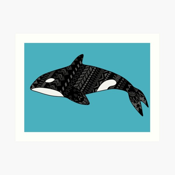 Orcinus orca, the Killer Whale Art Print