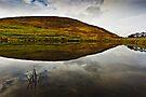 Reflections of Humbleton Hill, Northumberland National Park. UK  by David Lewins
