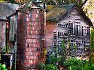 Rural Decay by Marcia Rubin