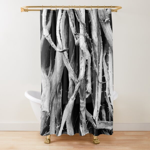 Dried out Shower Curtain