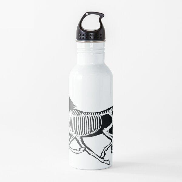 Black Transparent Xray Unicorn Skeleton: Tangelo Bg Water Bottle