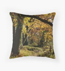 West Tanfield Throw Pillow