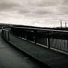 Mysterious Bridge.  by Ruth Jones