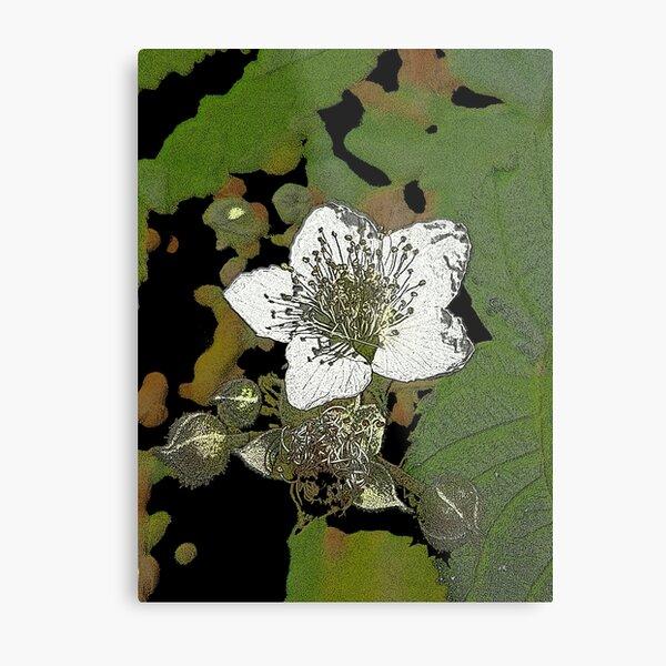 Posterized Bramble Blossom Metal Print