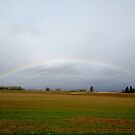 Sauvie Island Rainbow by njwilken