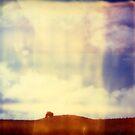 Across a field by J. M. Golding