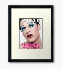 Darren Criss - Hedwig Poster Framed Print