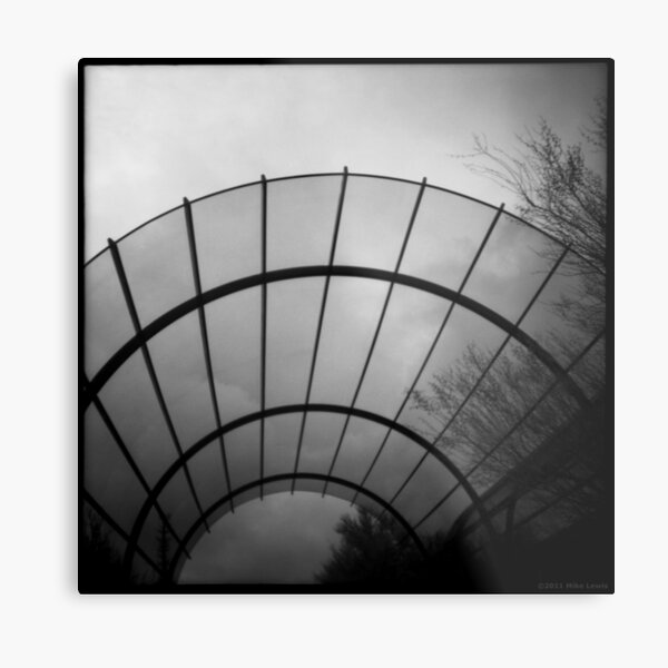 Inside the Bubble Metal Print