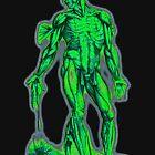 Anatomy man by Robert Chawner