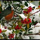 Robin & Holly by Angie O'Connor
