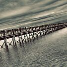 Walnut Pier by Tim Mannle
