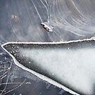 Iceberg by Milos Markovic