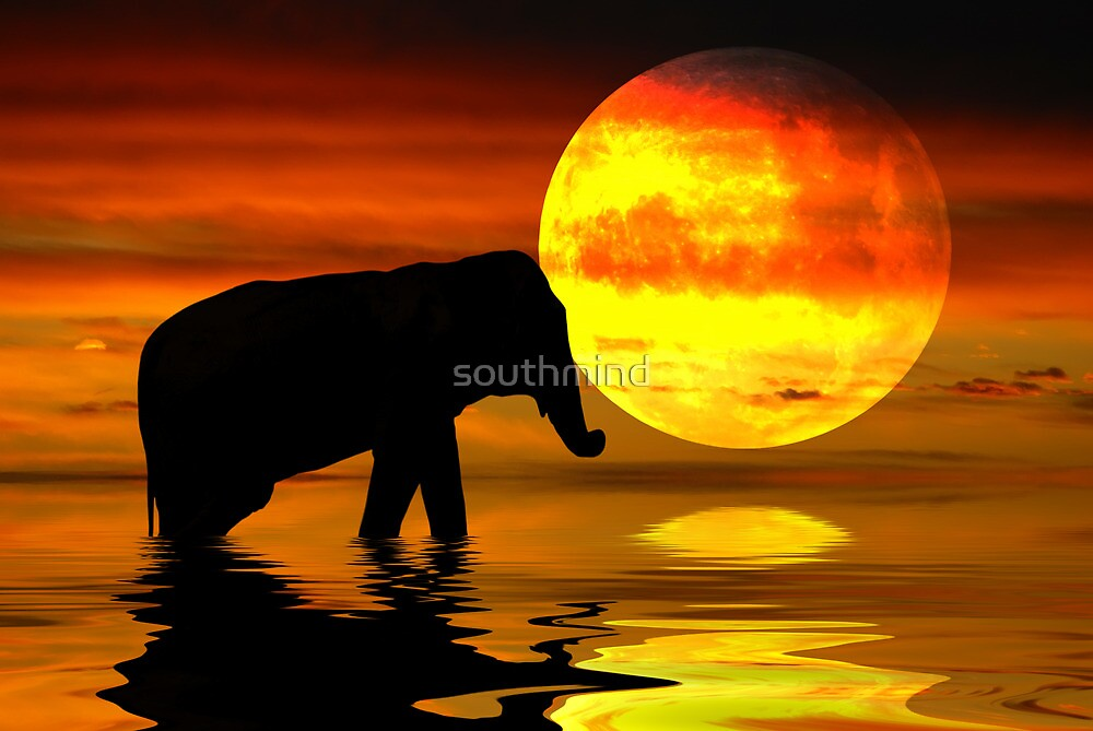 red moon in south africa - photo #31