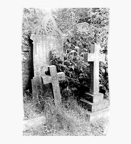 1982 - hindon cemetery Poster