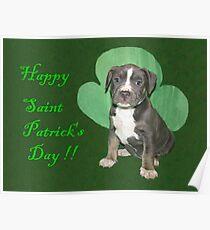 Happy Saint Patty's Day! Poster