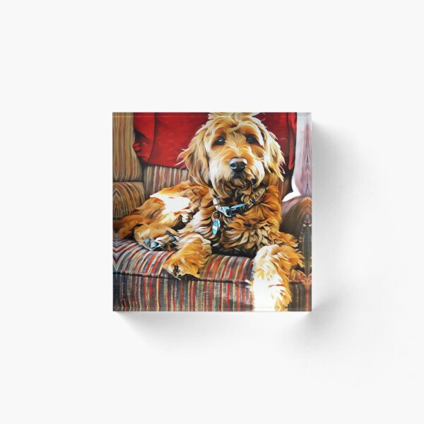 Puppy Dog Chair Warmer Acrylic Block