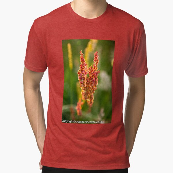 Wild pink flowers from Meadow flower collection  Tri-blend T-Shirt