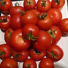 Bountiful Harvest by DEB CAMERON