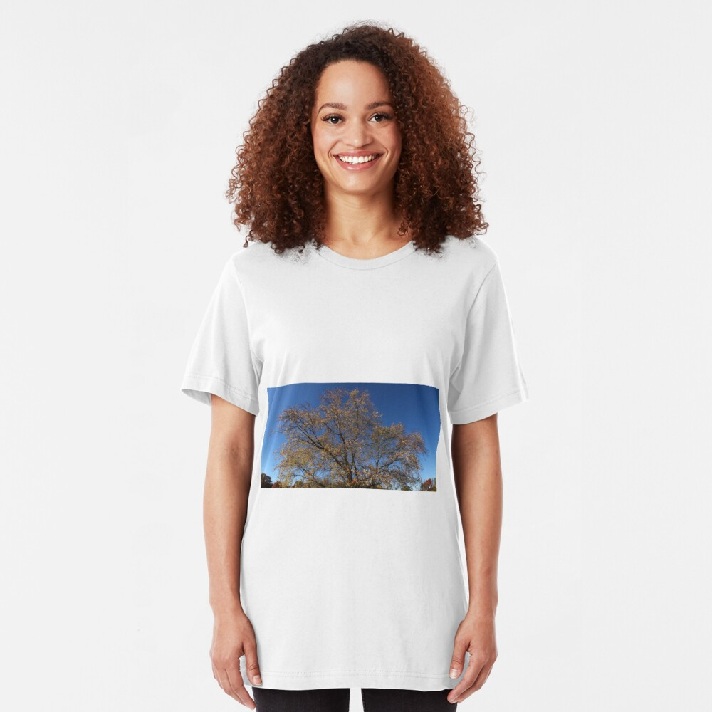Autumn Tree of New York State Slim Fit T-Shirt