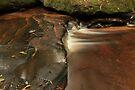 Liquid amber by John Morton
