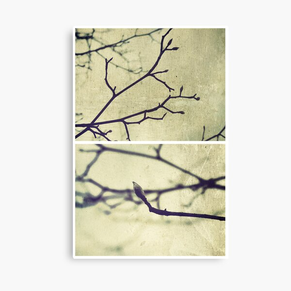 Spring II Canvas Print