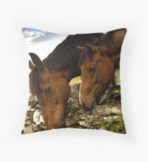It's always greener on the other side !! Throw Pillow