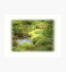 Waterlands Art Print