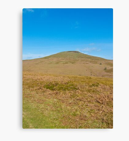 Sugar Loaf Canvas Print