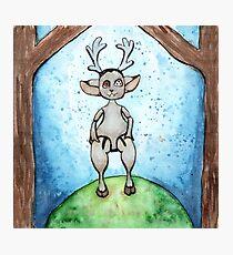 Deer Doll Photographic Print