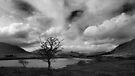 Big Sky by Paul McSherry