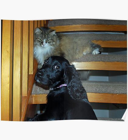 Mum...he wont let me go up the stairs Poster