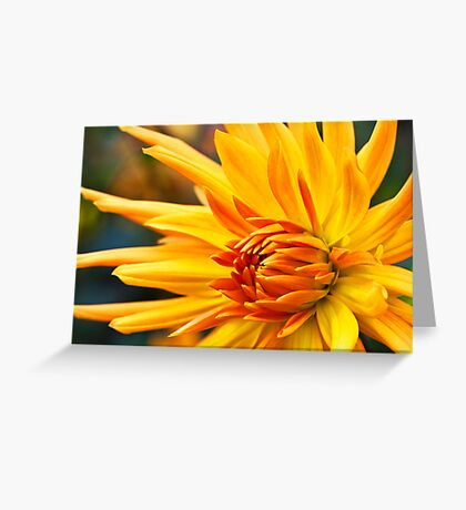 Golden Fingers Greeting Card