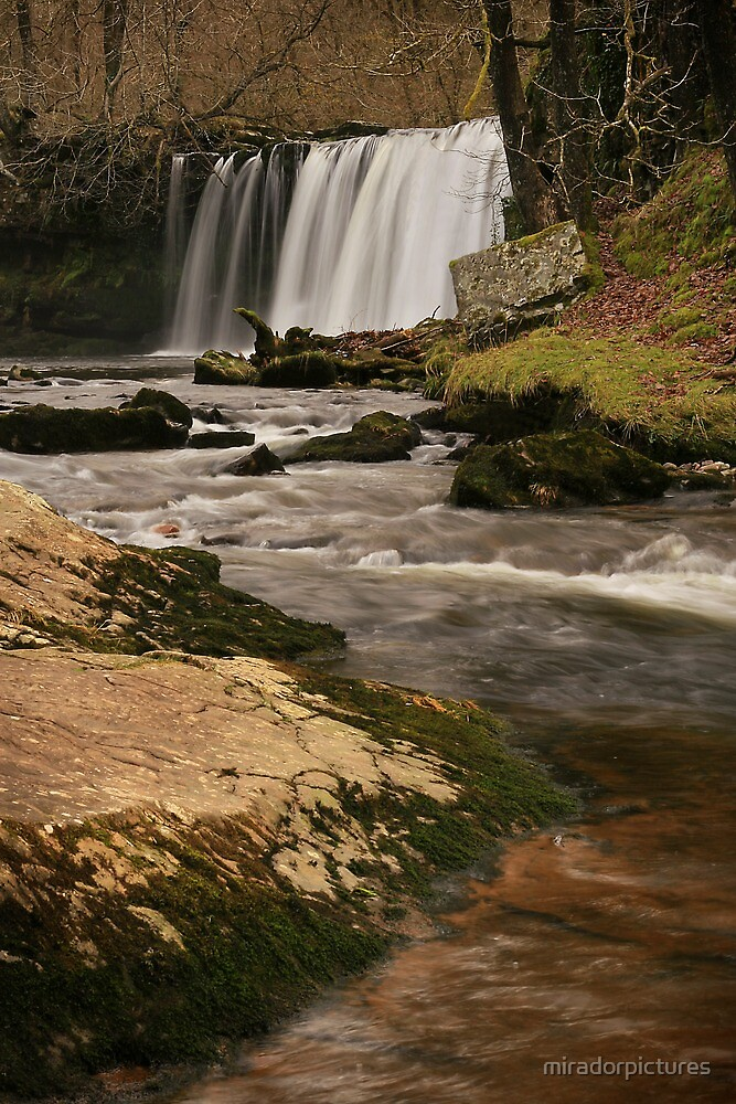 Horseshoe Falls In The Woods With Rapid Water.  by miradorpictures