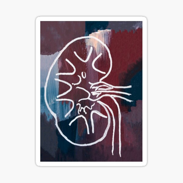 Gouached Abstract Kidney Sticker