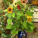 Sunflowers in a Vase. by Lee d'Entremont