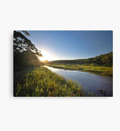 Thurra River - Croajingolong National Park Canvas Print