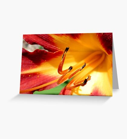Coming soon to a neighborhood near you...SPRING FLOWERS!!! ©  Greeting Card