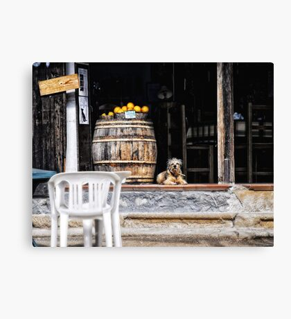 Tavern dog with oranges Canvas Print