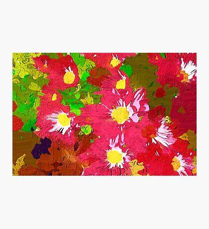 Deep pink daisy chrysanthemums Photographic Print