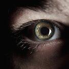 eye eye by weglet