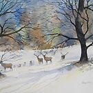 December Deer, Harewood, Yorkshire by artbyrachel