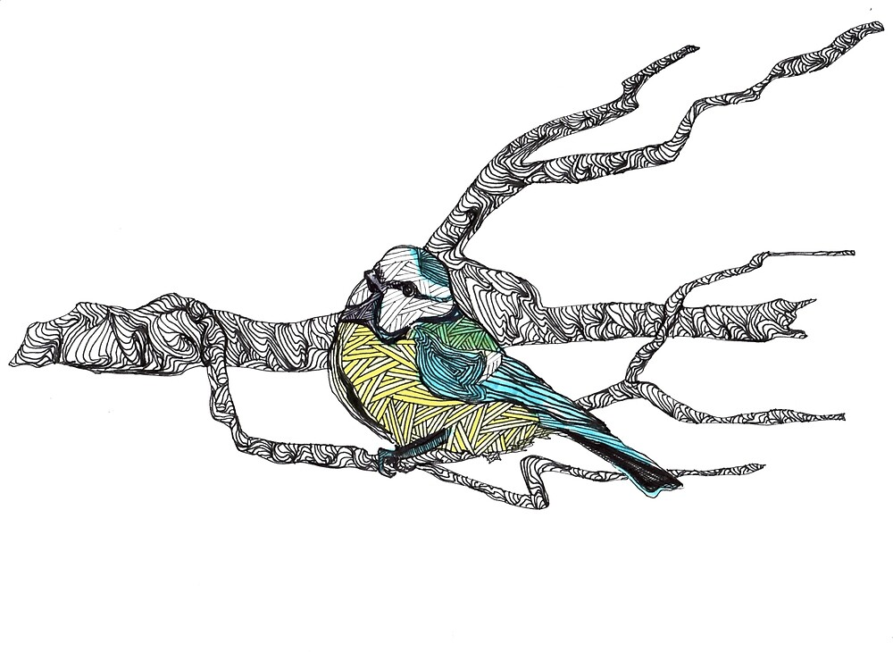 Blue tit on a branch - faith and truth by GundW