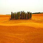 Tuscany Field by FOTIS MAVROUDAKIS