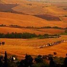 Tuscany panorama by FOTIS MAVROUDAKIS