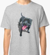 Staffy Aqua Classic T-Shirt