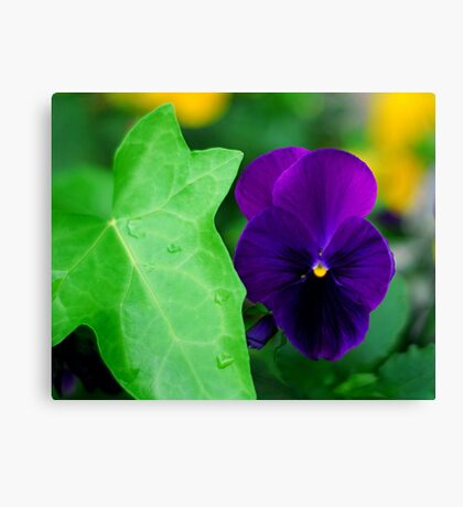 My Blue Flower Canvas Print