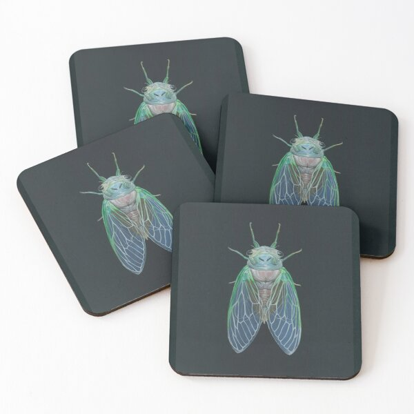 Newborn Cicada Coasters (Set of 4)