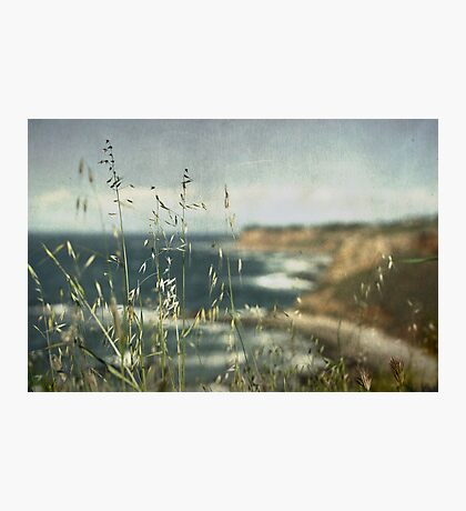 Grass on the Cliffs I Photographic Print