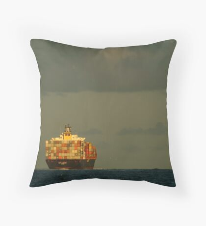 Little Boxes All The Same Throw Pillow