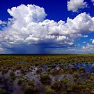 Flooding rains by Penny Kittel